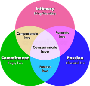 Triangular-Love-Theory