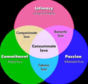 Triangular-Love-Theory
